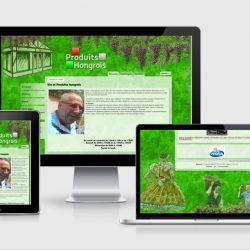 Le site sur différents écrans