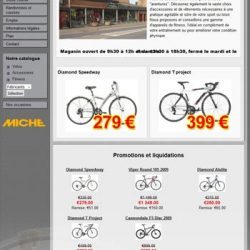 Screenshot du site cycle Pitau petit écran